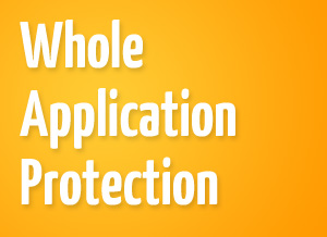 Whole Application Protection